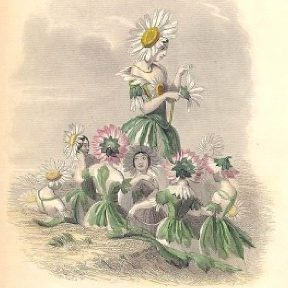 Françoise Philidet